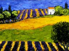 Fields of Color, Provence